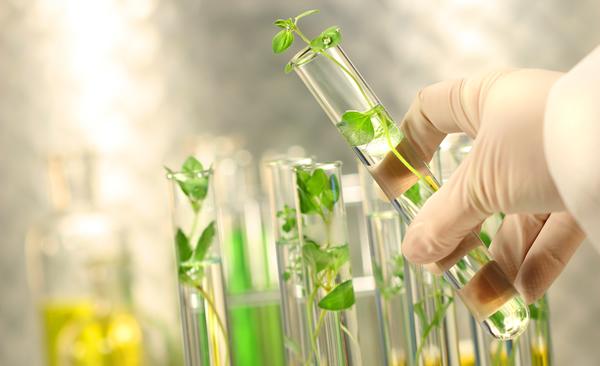 Imagen Bioeconomía y salud